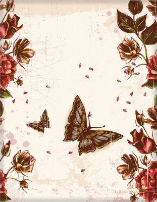 Butterfly Blooms Front Cover