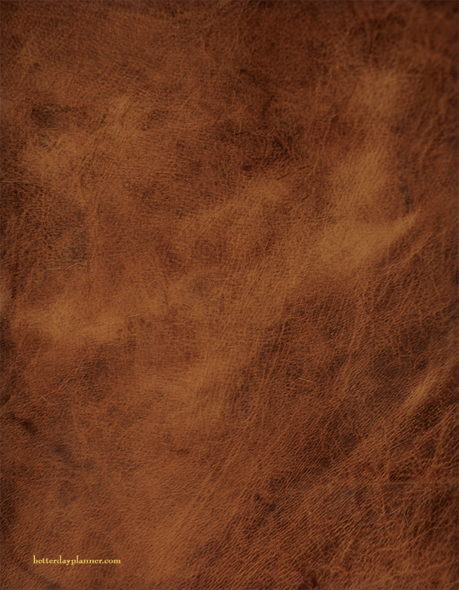 Standard Brown Leather Cover Back