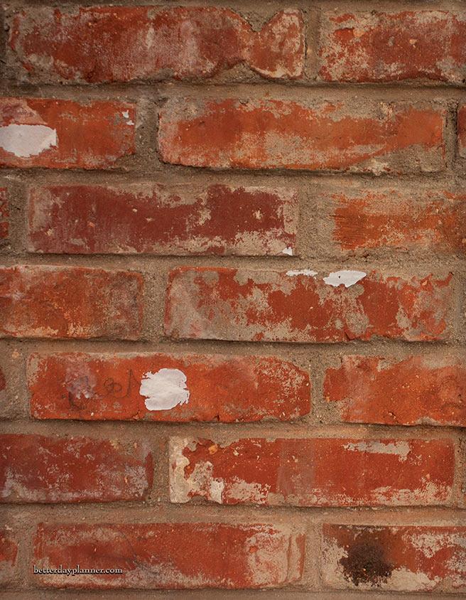 Red Bricks Back Cover